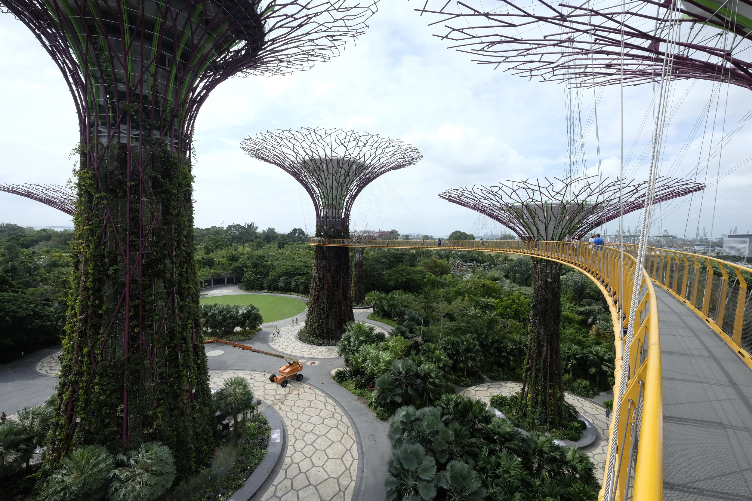 Singapore Gardens at the Bay Tuinen Tree Top Walk