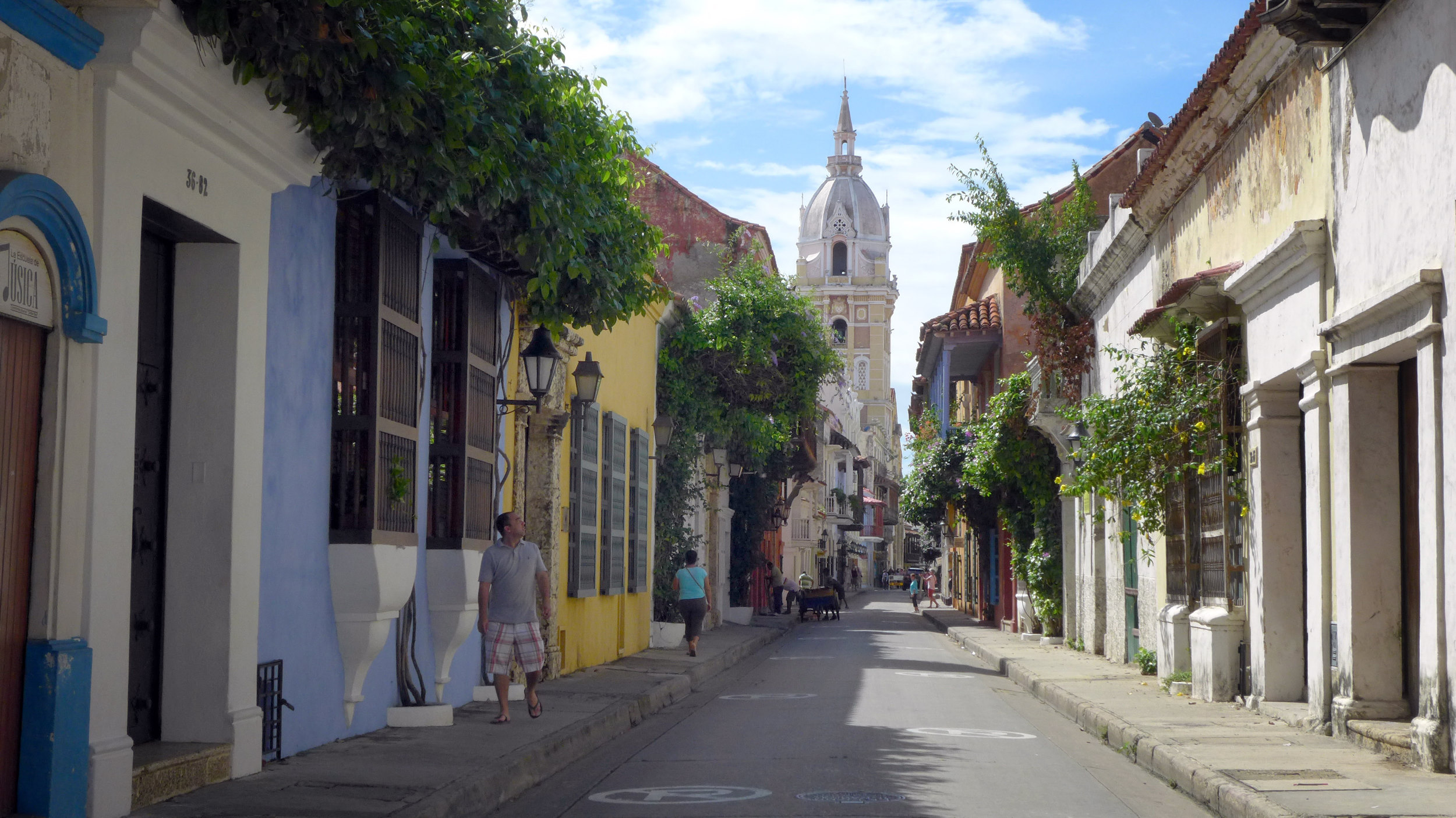 Colombia Cartagena Oude Stad Kathedraal Planten